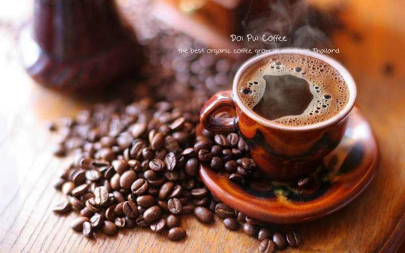 DOI PUI COFFEE  THE BEST ORGANIC COFFEE BEANS - กาแฟดอยปุย
